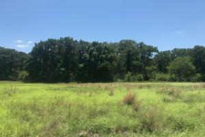 10 acres Peeltown Tract - Kaufman County TX