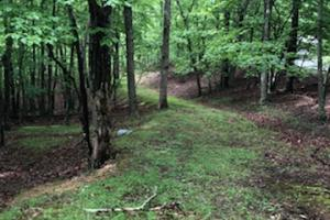 5 Acres on Smithfield Dr in Preston Forrest - Montgomery County VA