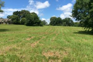 Country Meadow Estates Lot 21 - Hinds County MS
