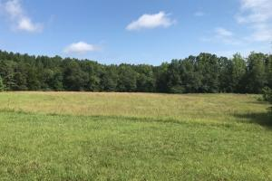 Recreational Land and Homesite - Greenville County SC