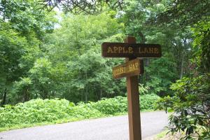 Apple Mountain Estate Lot (North) in Spruce Pine - Mitchell County NC