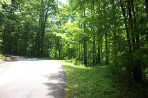 Apple Mountain Estate Lot (South) in Spruce Pine - Mitchell County, NC