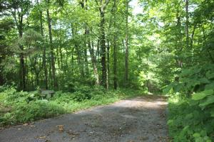 Gentle Building Lot in Established Community with South-West Facing Views (Lot B23) - Mitchell County, NC