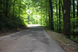 Paved roads through most of the community (7 of 7)