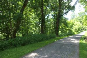 Long Range View Lot, Adjacent to Blue Ridge Parkway (Lot 5/6) - McDowell County NC