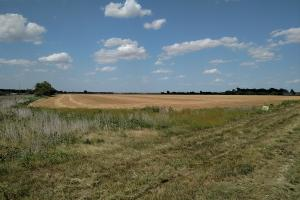 90 Acres Premium Dryland - Harvey County KS