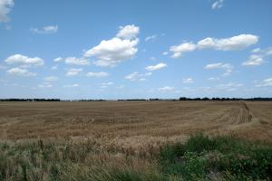 78 Acres Premium Dryland - Harvey County KS
