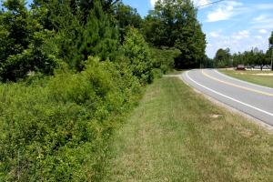 0 Hwy 42 Moncure NC/Perfect Homesite