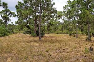 Pine Island Commercial Corner Lot in Lee, FL (10 of 11)