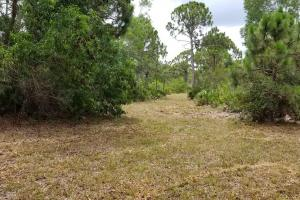 Pine Island Commercial Corner Lot in Lee, FL (11 of 11)