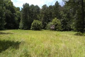 Sportsman's Paradise - Tallahatchie County MS