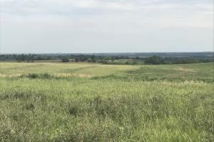 Hunting, CRP and Hayland in Richardson, NE (9 of 11)