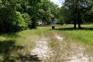 41 Acre Hunting/Recreational Tract in Polk, TX (8 of 13)
