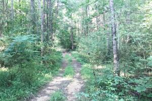 Lost Creek Hunting Tract in Jefferson, AL (12 of 19)