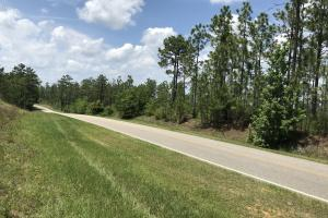The May Tower Road Longleaf Tract A - Baldwin County AL