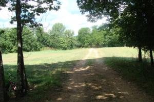 716+/- Acre White River Hunting & Trout Fishing Property in Izard, AR (26 of 79)