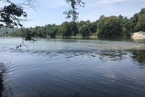 716+/- Acre White River Hunting & Trout Fishing Property in Izard, AR (3 of 79)
