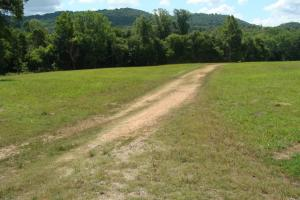 716+/- Acre White River Hunting & Trout Fishing Property in Izard, AR (33 of 79)