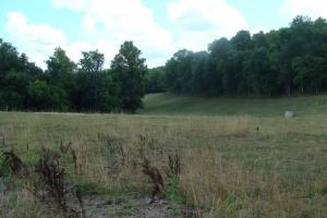 716+/- Acre White River Hunting & Trout Fishing Property in Izard, AR (42 of 79)