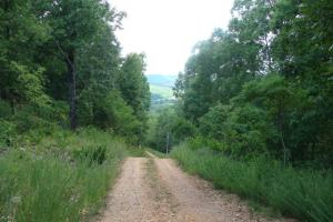 716+/- Acre White River Hunting & Trout Fishing Property in Izard, AR (79 of 79)