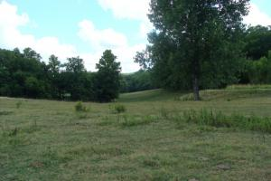 716+/- Acre White River Hunting & Trout Fishing Property in Izard, AR (43 of 79)