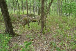 716+/- Acre White River Hunting & Trout Fishing Property in Izard, AR (50 of 79)