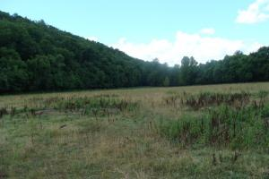 716+/- Acre White River Hunting & Trout Fishing Property in Izard, AR (41 of 79)