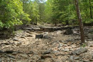 716+/- Acre White River Hunting & Trout Fishing Property in Izard, AR (56 of 79)
