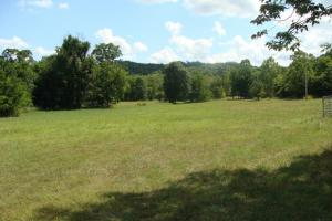 716+/- Acre White River Hunting & Trout Fishing Property in Izard, AR (25 of 79)