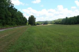 716+/- Acre White River Hunting & Trout Fishing Property in Izard, AR (34 of 79)