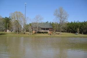 Lowndes County 361 Farm - Lowndes County AL