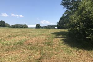 Easley Homesite and Recreational Property in Pickens, SC (12 of 29)
