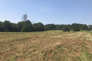 Easley Homesite and Recreational Property in Pickens, SC (7 of 29)