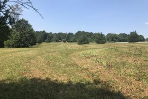 Easley Homesite and Recreational Property in Pickens, SC (3 of 29)