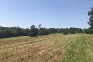 Easley Homesite and Recreational Property in Pickens, SC (9 of 29)