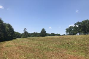 Easley Homesite and Recreational Property in Pickens, SC (21 of 29)