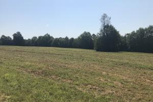 Easley Homesite and Recreational Property in Pickens, SC (15 of 29)