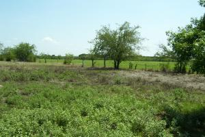 Pasture- Edgewood Property (5 of 6)