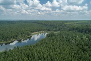 Private Lake and National Forest in Jones, MS (3 of 6)
