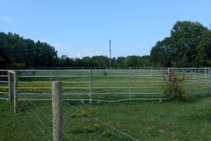 Pasture and horse fence right behind the house (4 of 10)
