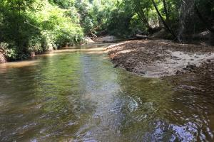 The Big Tallawampa Creek 25 Tract in Choctaw, AL (11 of 11)