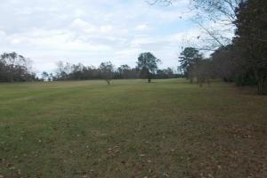 Canterbury Development - Monroe County AL
