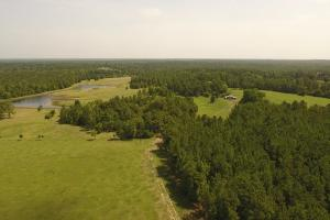 Spacious Ranch near Lake Livingston in Polk, TX (2 of 22)