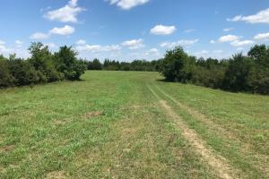 Bigbee Valley Hunting/ Potential Agriculture Tract in Noxubee, MS (5 of 15)