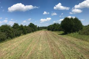 Bigbee Valley Hunting/ Potential Agriculture Tract in Noxubee, MS (11 of 15)