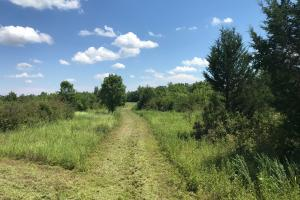 Bigbee Valley Hunting/ Potential Agriculture Tract in Noxubee, MS (13 of 15)
