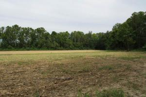 Ag & Timber Land  - Montgomery County MS