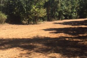 Road work and food plots ready for hunting season! (8 of 21)