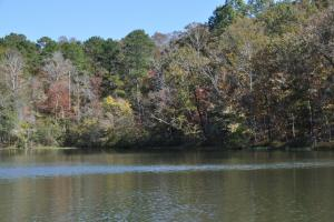 Lake Mitchell Waterfront Acreage in Coosa, AL (31 of 51)