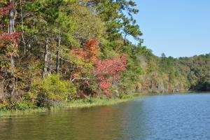 Lake Mitchell Waterfront Acreage in Coosa, AL (51 of 51)